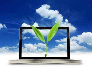 Groene duurzame website