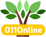 011 Online Logo